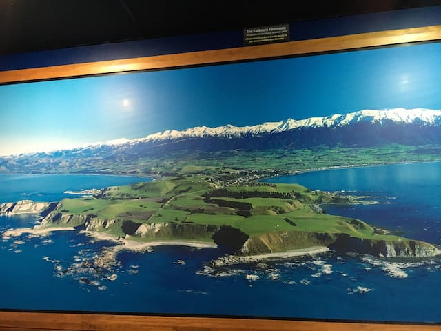 Avoca Highlights where the Mountains meet the Sea.