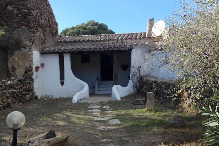 Casa Rurale Immersa nel Verde.  IUN P5365