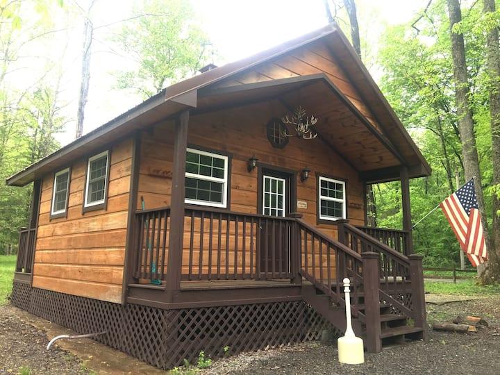 Military Maxi Primitive Cabin