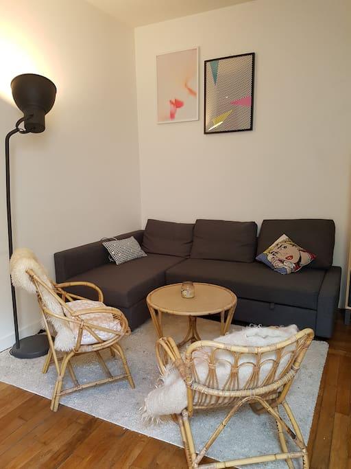 Salon (avec canapé lit 2 places confortable)