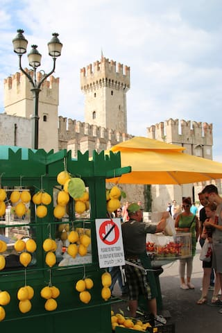 Frutta fresca Local fresh fruit street shop