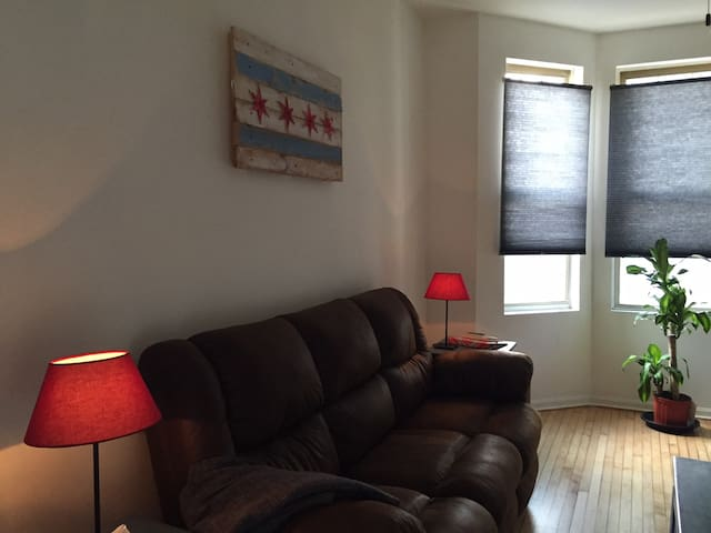 Newly Renovated Logan Square Apartment