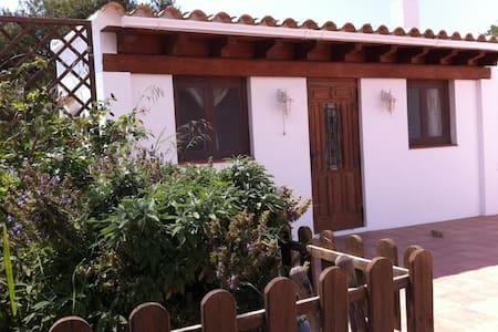 Precioso Loft con techo de madera en urbanización - Sant Antoni de Portmany