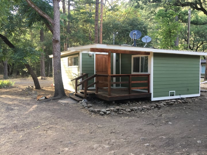 Trinity River forest view cabin
