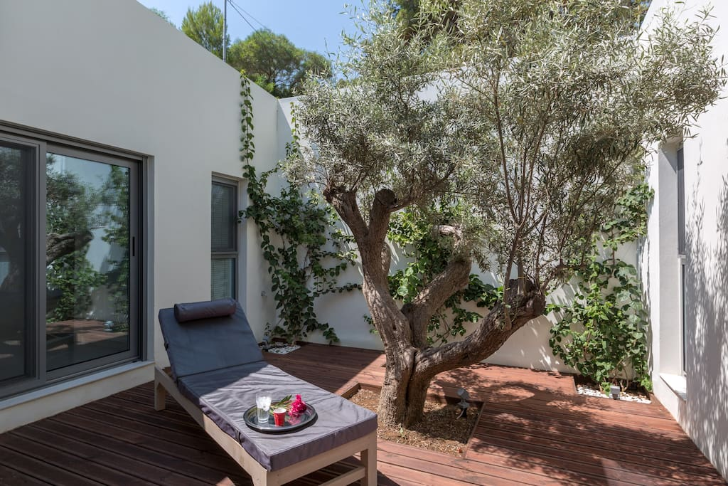 An Olive tree together with bougainvilleas are in the centre surrounded by the bedrooms on either side.  A stunning piece of design