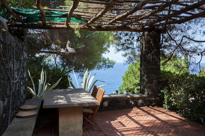 Casa Rosmarino: giardino, stupenda vista sul golfo
