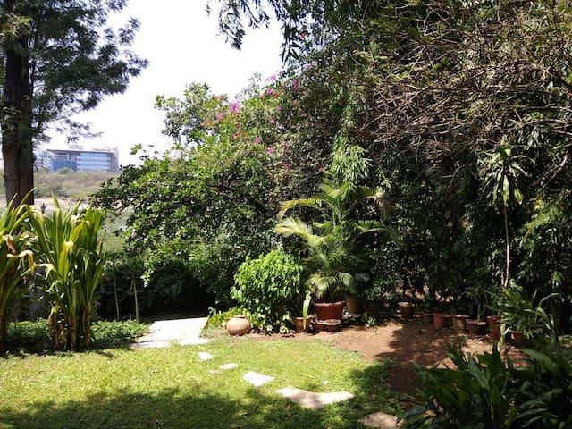 River House, Koregaon Park-  Street side S1