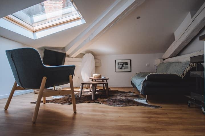 La Marquise Wilson - Appartement atypique en hypercentre de  Toulouse