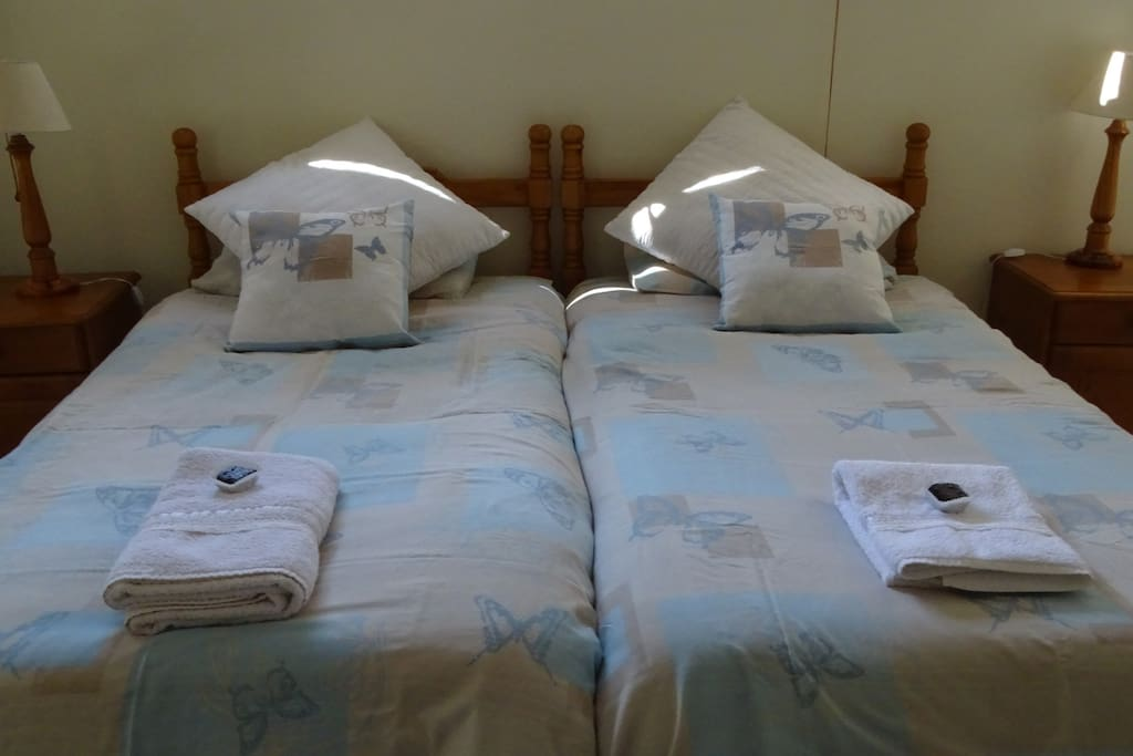 Twin beds with electric under-blankets.