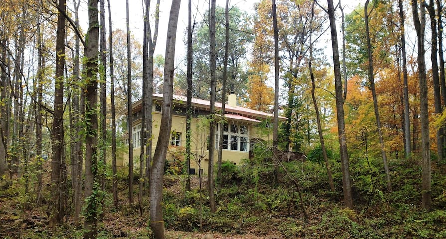 McLean Home, close to DC and to hiking trails