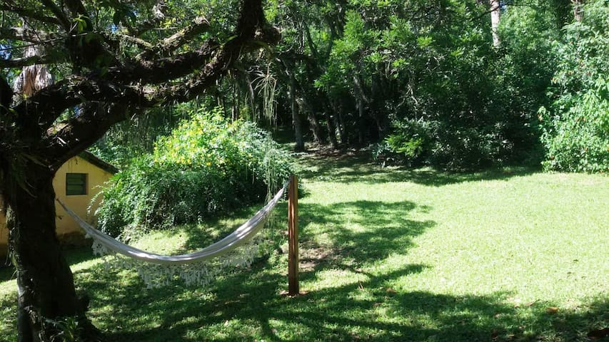 rede debaixo da árvore