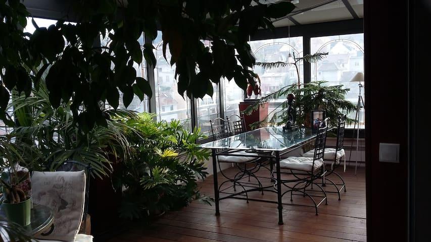 Bel appartement de 120m² plein ciel avec veranda - Chaville - Daire