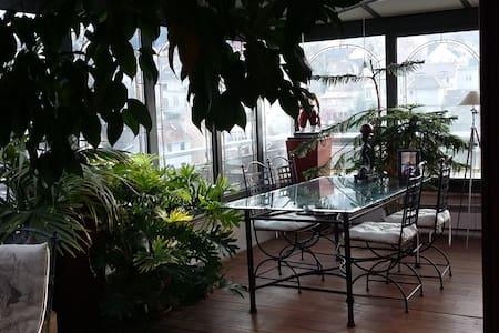 Bel appartement de 120m² plein ciel avec veranda - Chaville - Pis