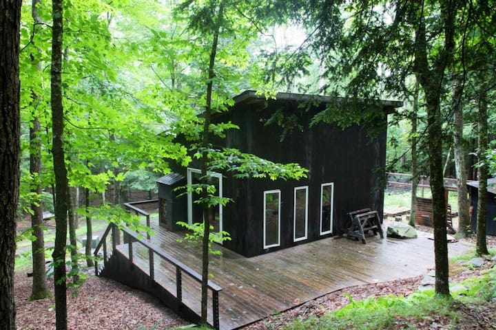 [New Listing] Cabin in the Woods -Secluded, Modern