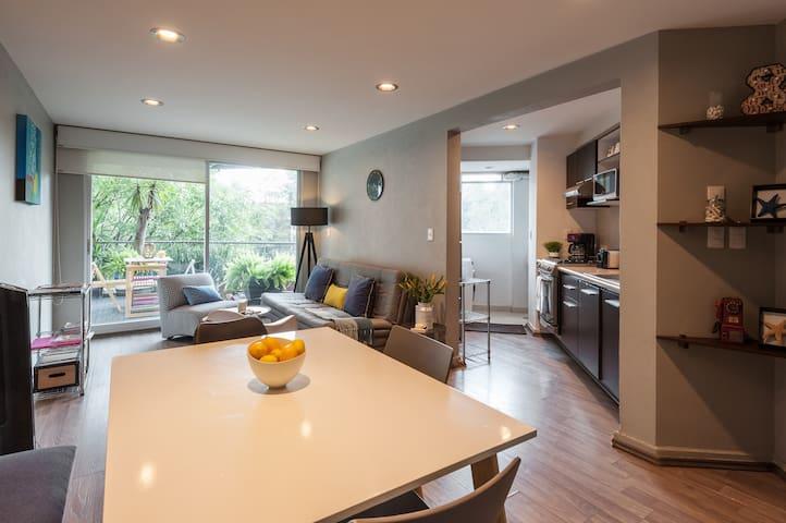 Cozy apartment in La Condesa for 5