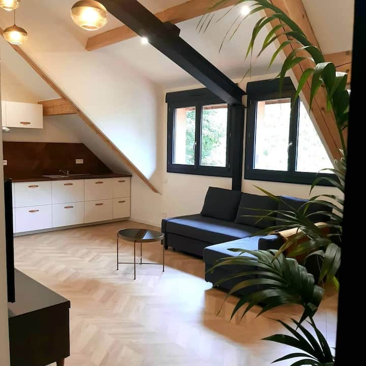 Charmant appartement (2) à Muret proche Toulouse