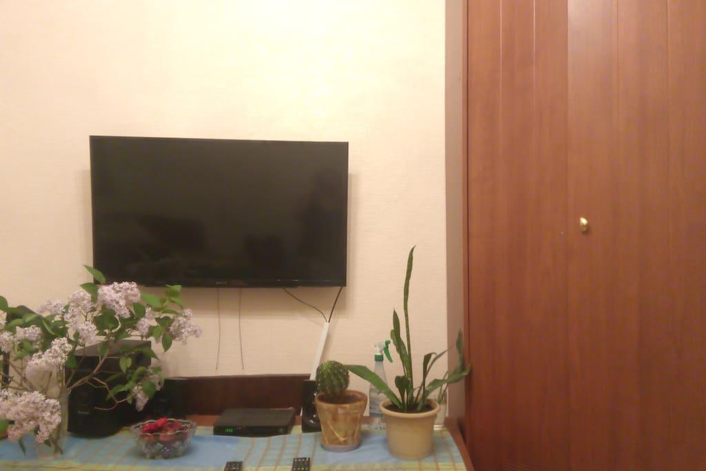 TV,wi-fi