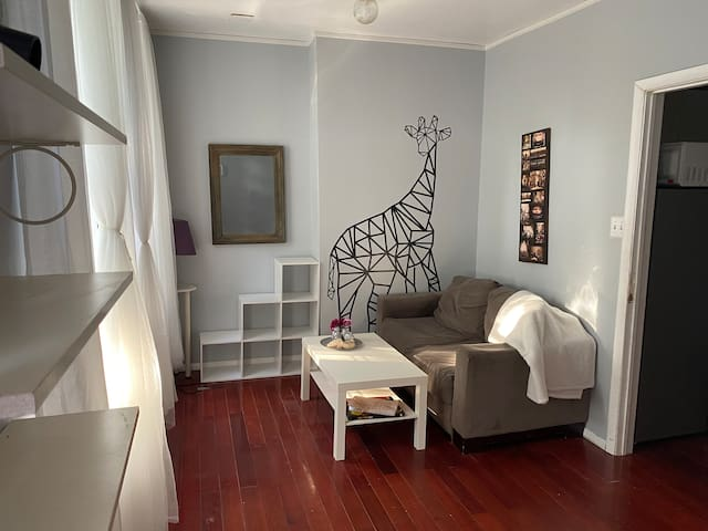 Beautiful private unit in the heart of Brooklyn