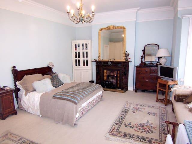 Bright Comfortable King - Dublin - House