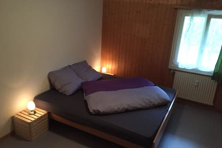1 Room close to a train station - Meiringen