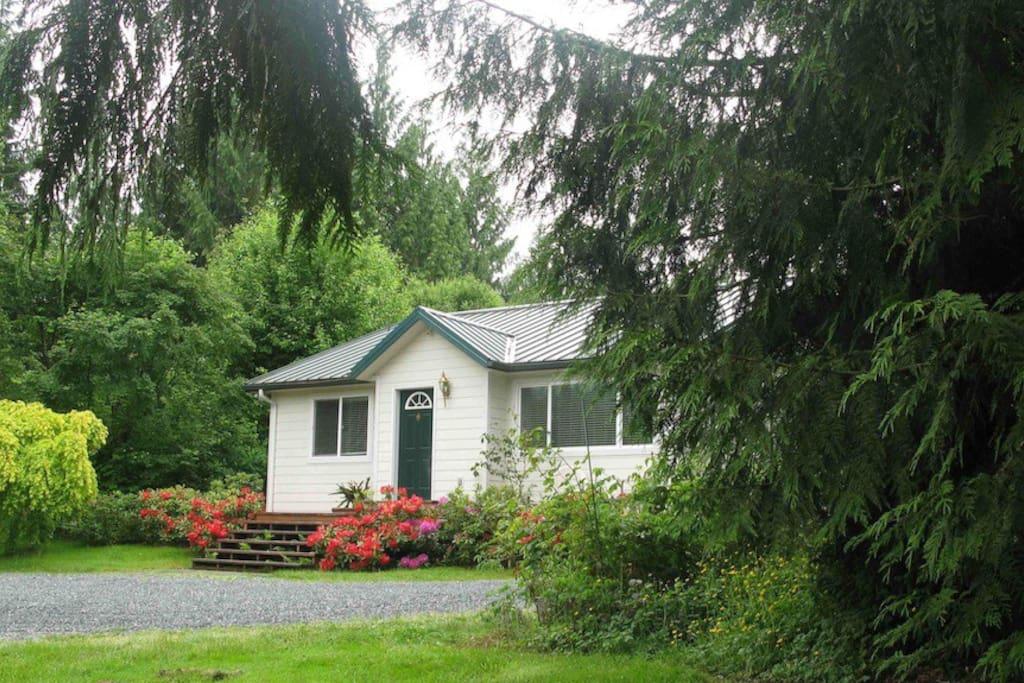 Cottage in Summer