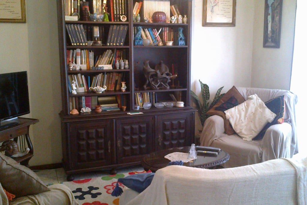 """""""Sala de Estar"""" com pequena biblioteca - Televisão compartilhada (Com canais internacionais) - Hi-Fi Wireless"""