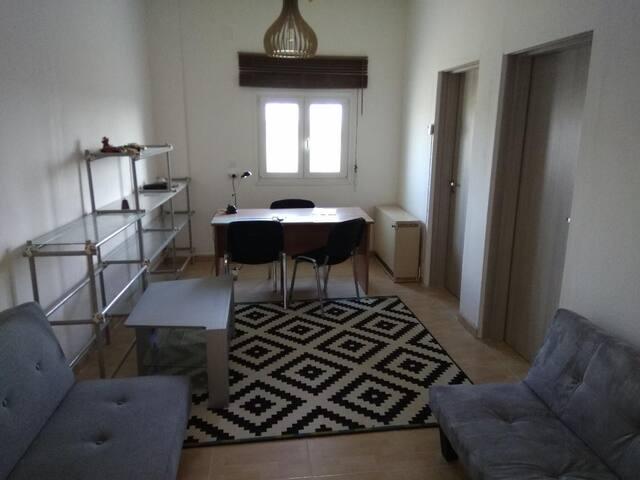 Σαλόνι με δύο καναπέδες-κρεβάτι
