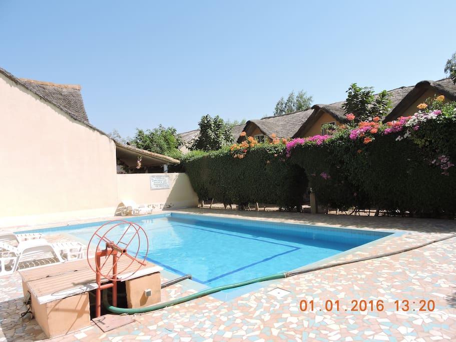la piscine co-locative , contre la villa!