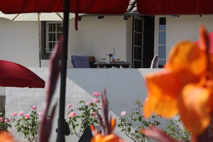 Terrace  Cottage at Domaine Lavie - free WIFI - Salies-de-Béarn - Huis