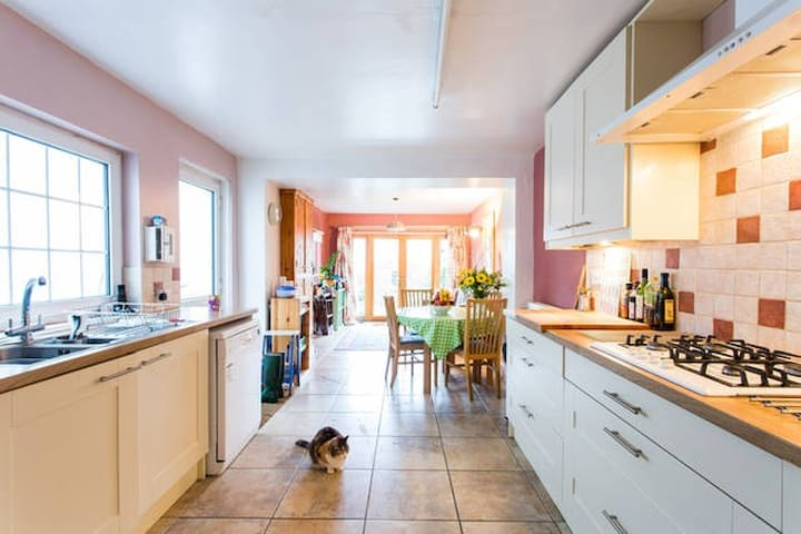 Huge Comfortable House with Cat !