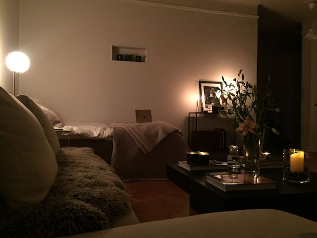 Dream location apartment in Stockholm - Stockholm - Apartment