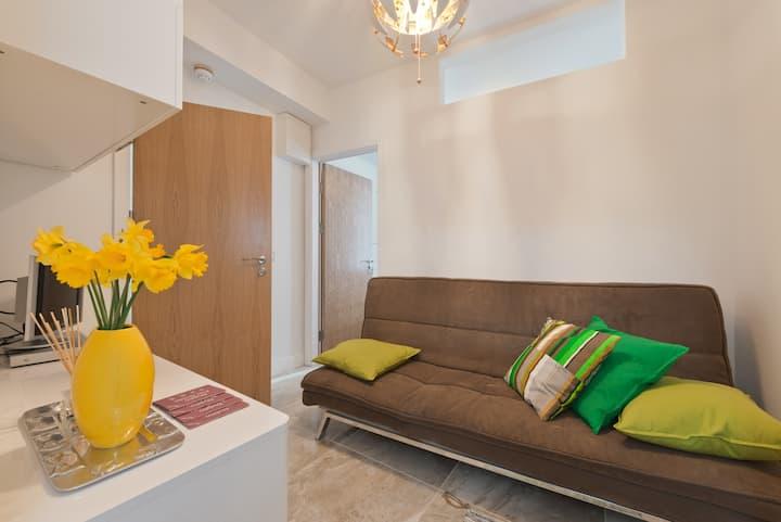 Apartment in Dublin City Centre A1