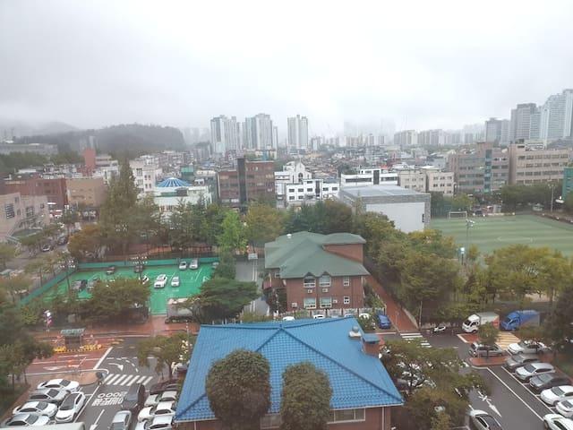 은행나무^^ 내집처럼 편히 쉴수 있는 곳. 삼성병원후문 걸어서 5분 롯데월드.코엑스가까움.
