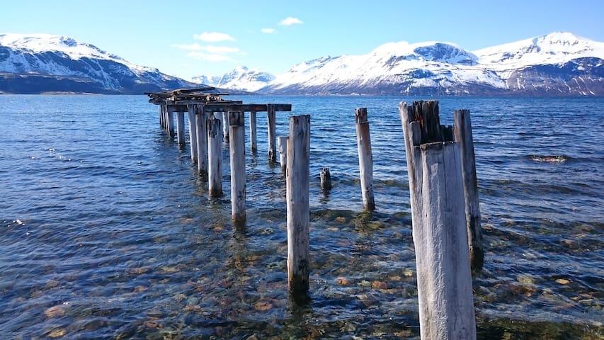 Northern Lights/Fishing Lyngen (1)
