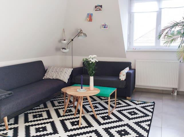 Logement 2 pièces, centre ville - Estrasburgo - Apartamento