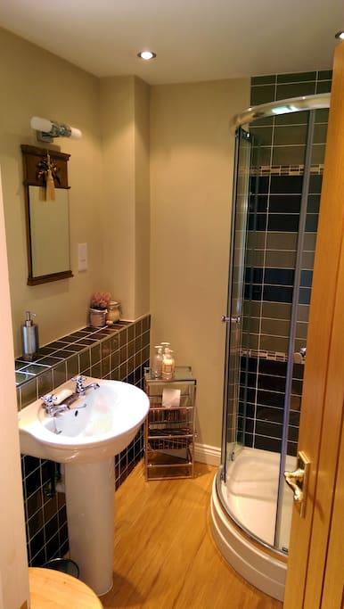 Guest room 1 - ensuite shower room