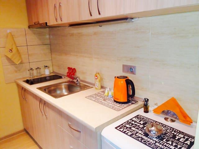 Cosy & Fresh Apartment in Vilnius City - Vilnius - Appartement