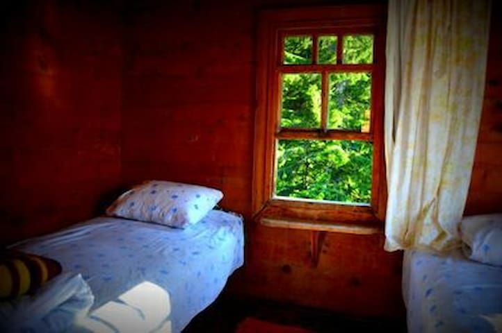 Ayder Istanbul Pansiyon (Country House Hostel)