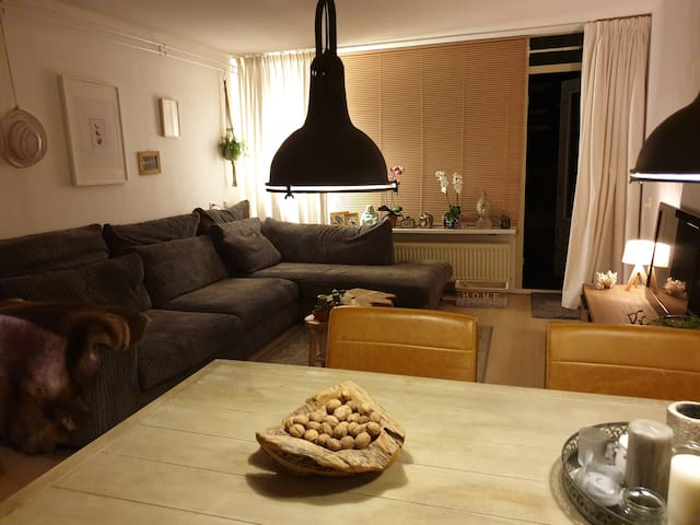 Lovely house in Rotterdam 20 min from city center