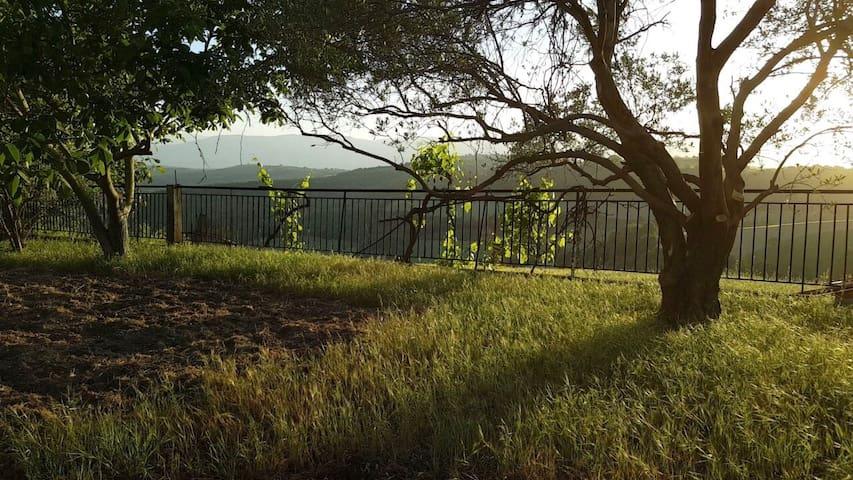 Schönes ruhiges Ferienhaus mit Garten