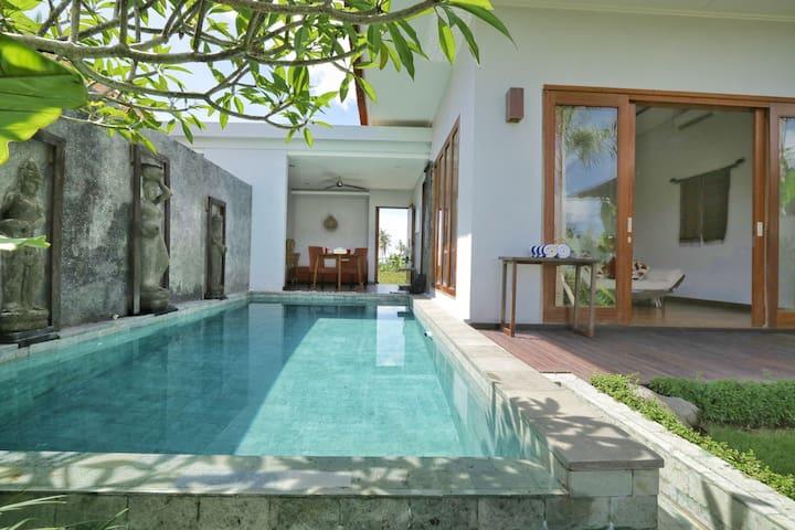 Ubud Hidden Tranquil villa,endless ricefield view