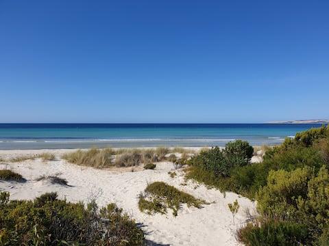 Blue Wren at Beautiful Island Beach