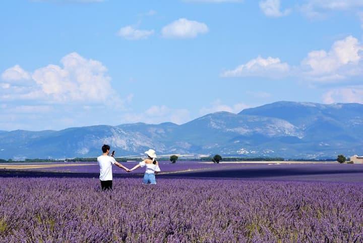 Provence-Luberon Chambre d'hôte dans Mas Provençal
