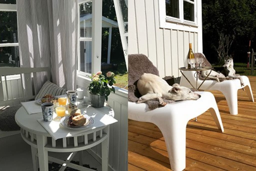 Welcome to our cozy summer cottage!