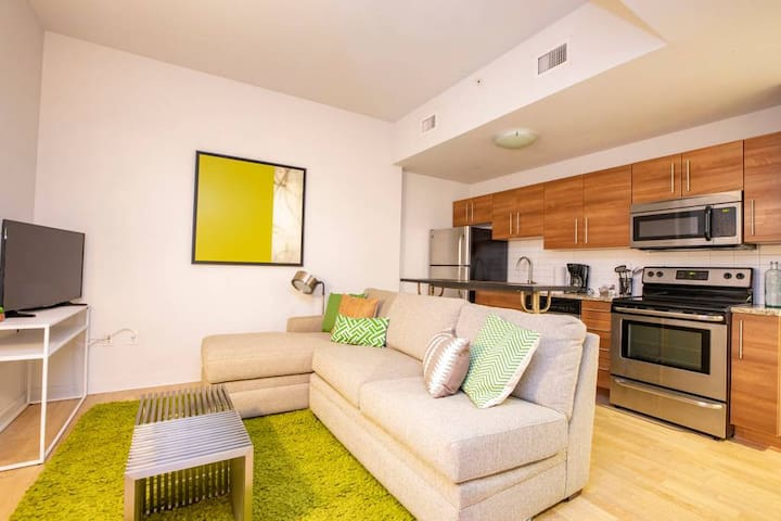 Cozy 1 BD walking distance to Art Museum