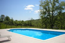 Pool with vineyards view