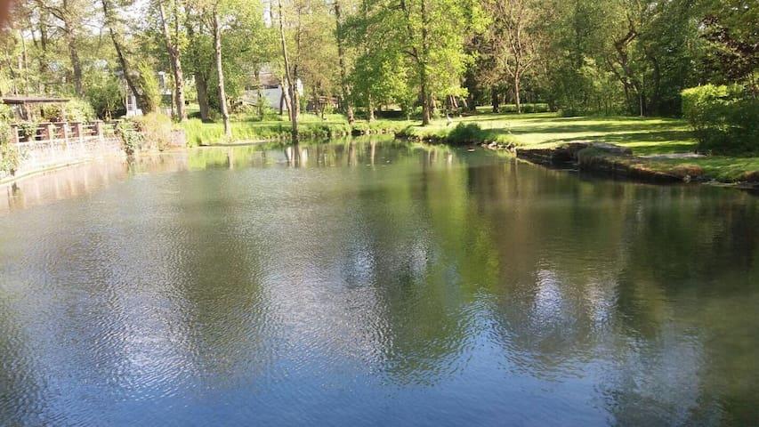 Le Moulin des Aulnes