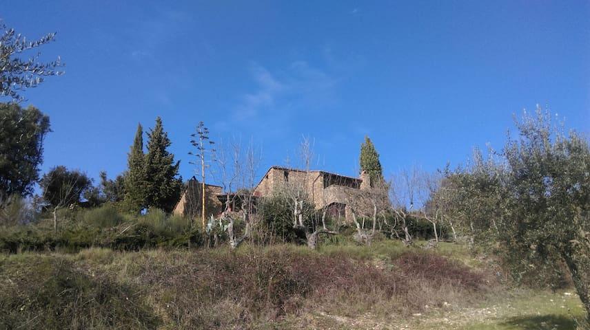 Fascinating rustical stone house - Castellina in Chianti - 一軒家
