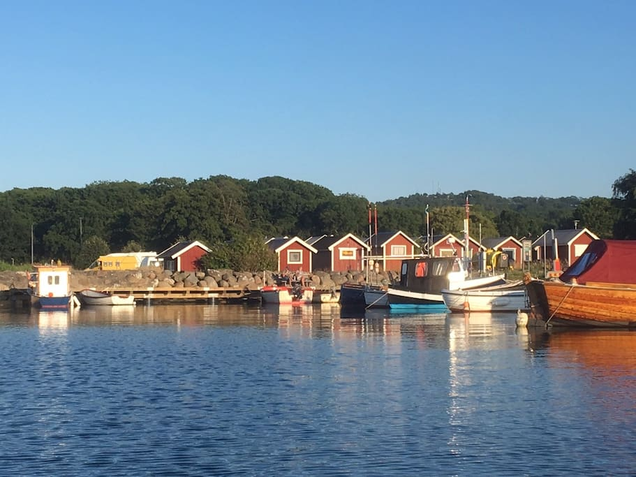 Kivik harbour, a 5 min walk from the house