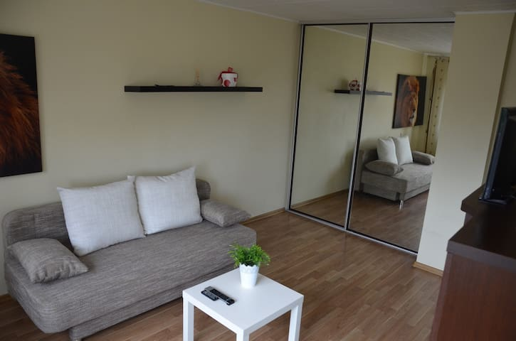 Center Studio Apartment - Marijampolė